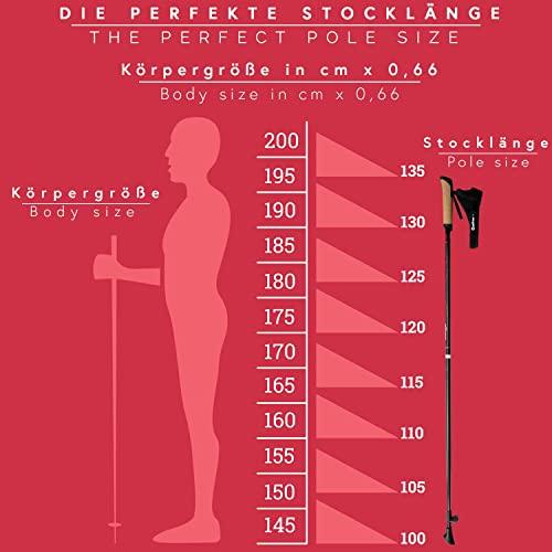 Carbon Ultra Light Walking Stock mit Handgelenkschlaufe verschiedene Längen Superleicht Premium GRATIS – Nordic Walking/Fitness App (110 cm) - 2