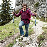 Trekkingstöcke, Melojoy Nordic Wanderstöcke Falttstöcke Walking Stöcke Zusammenklappbarer für Trekking und Wanderungen (1 Paar) - 3