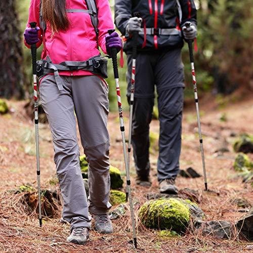 Trekking Stöcke Climber Wanderstöcke Teleskop 67 – 136 cm GRATIS – Nordic Walking/Fitness App - 7