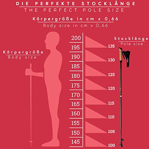Carbon Ultra Light Walking Stock mit Handgelenkschlaufe verschiedene Längen Superleicht Premium GRATIS – Nordic Walking/Fitness App (120 cm) - 2