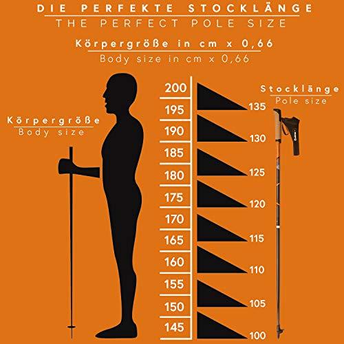 POWRX Nordic Walking Stöcke Carbon Light mit Handgelenkschlaufen (115 cm) | GRATIS – Nordic Walking/Fitness App - 2