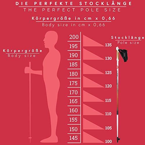 Nordic Walking Stöcke Aluminium mit Handgelenkschlaufen | GRATIS – Nordic Walking/Fitness App (120) - 6