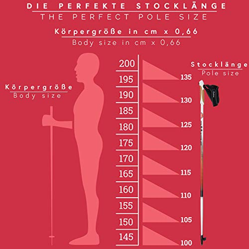Nordic Walking Stöcke Aluminium mit Handgelenkschlaufen | GRATIS – Nordic Walking/Fitness App (110) - 3