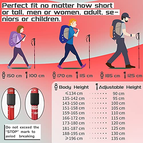 TheFitLife Nordic Walking Bergsteigen Anti-Schock Trekking Walking Trail-Stöcke, 2er Pack, zusammenschiebbare Teleskopstöcke, ultraleicht für Wandern, Bergsteigen (Schwarz) - 3
