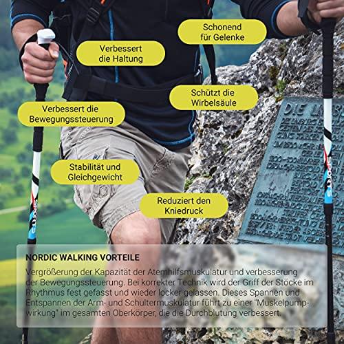 Msports Nordic Walking – Trekking Premium Carbon Stöcke – aus hochwertigem Carbon – Superleicht – auswählbar mit Tragetasche – Nordic Walking – Wanderstöcke (Trekking Stöcke) - 6